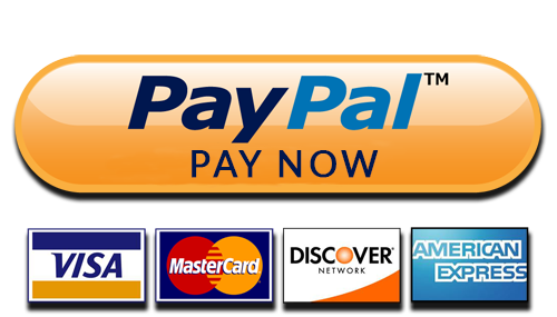 Image result for pay now paypal
